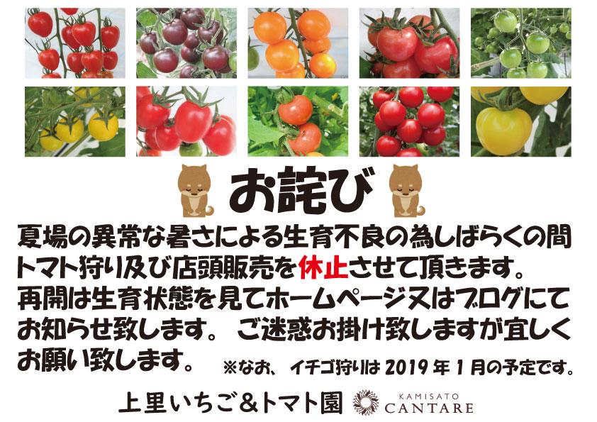 トマト狩り・店頭販売停止のお知らせとお詫び