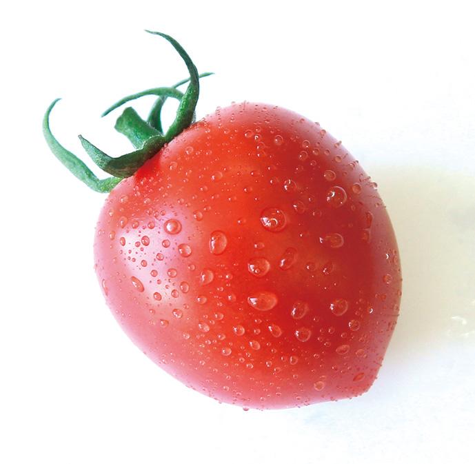 tomato8-2